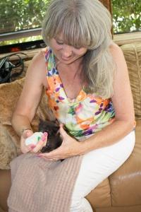 Katie Griggs feeding kitten